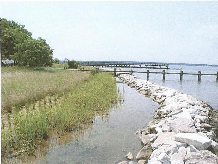 living shoreline Maryland